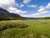 bear-lake-wide-meadow-25623817