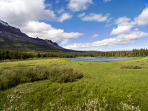 bear-lake-wide-meadow-25623817